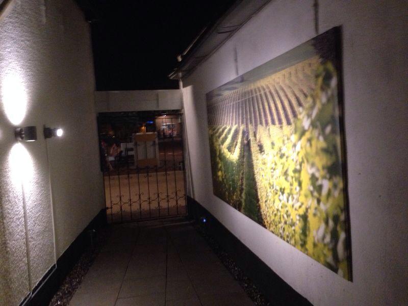 Tuin LED Verlichting (6)